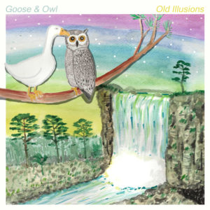 Goose & Owl - Old illusions